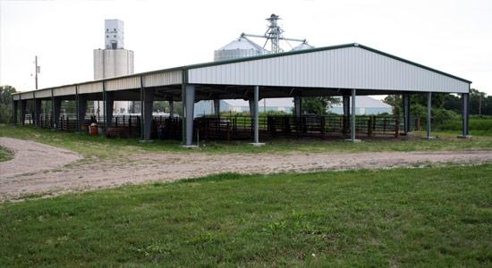 livestockbuilding